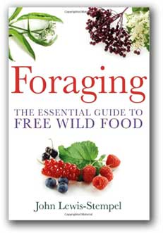foraging guide to free wild food