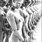 Sex Robots – the Fact and the Fiction