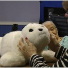 Artificial Robot Pets make better Companions than Real Pet's